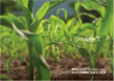 冊子「植物バイオテクノロジー101 あなたの疑問にお答えします」