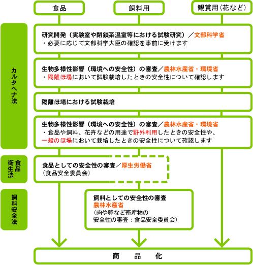 日本における遺伝子組み換え作物の安全性審査の概要