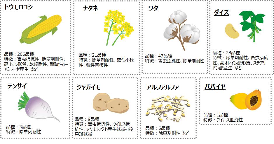 日本で使用が認められている遺伝子組み換え作物