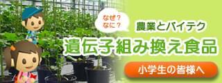 農業とバイテク なぜ?なに?遺伝子組み換え食品(小学生向けコンテンツ)
